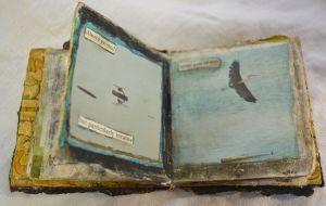 c56-birdbook_detail.jpg